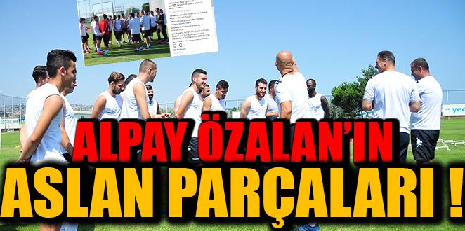 ALPAY ÖZALAN'IN ASLAN PARÇALARI